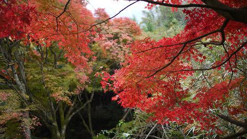滑川渓谷 紅葉