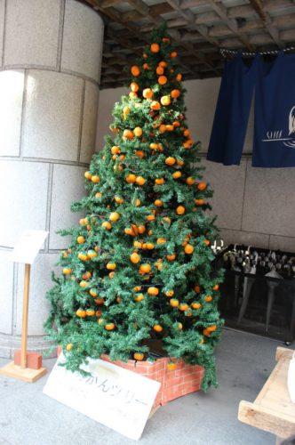 愛媛のクリスマスツリー