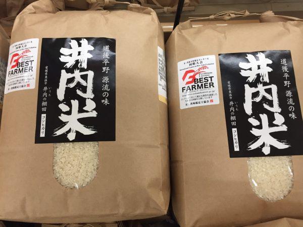 iuchi rice