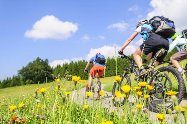 自転車の旅