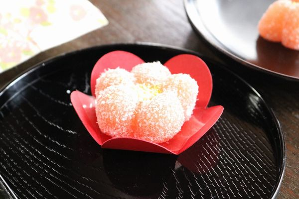 hanamochi