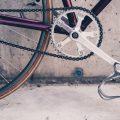 11月12日は愛媛サイクリングの日♡