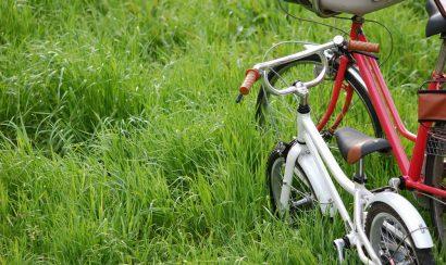 bucycle