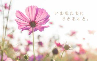 西日本豪雨-台風19号