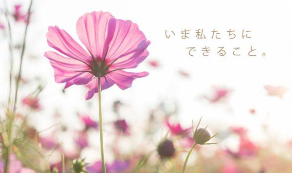 西日本豪雨 台風19号