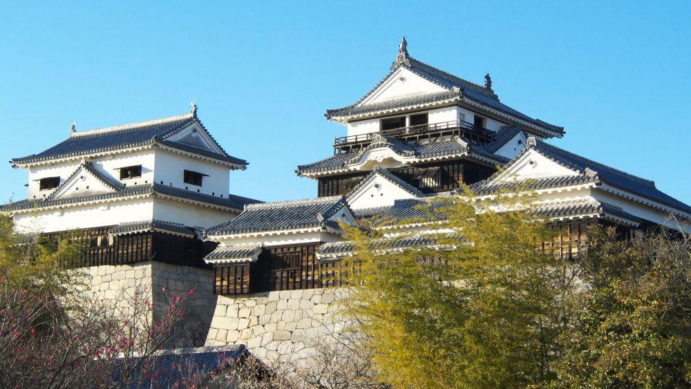 松山城 冬の陣