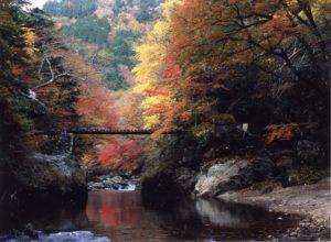 小田渓谷の紅葉